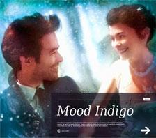 Mood Indigo / L'Ecume des Jours (France)