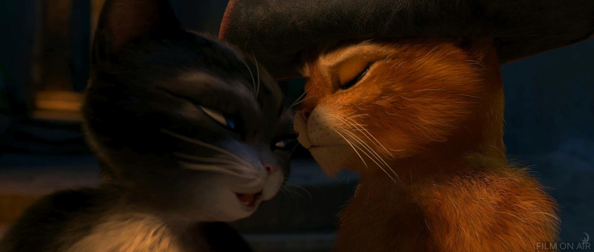 Кот в сапогах и киса мягколапка занимаются сексом