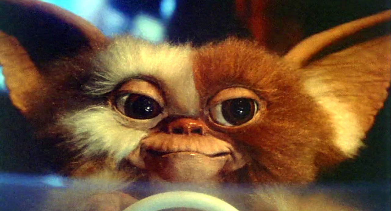 Zach Galligan would welcome a 'Gremlins' reboot