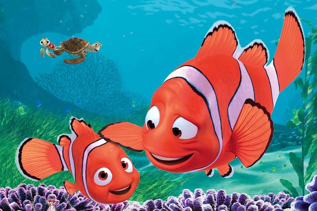 wallpaper nemo fish