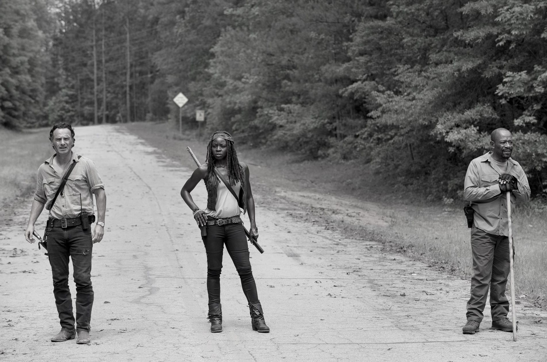 Andrew Lincoln, Danai Gurira and Lennie James in The Walking