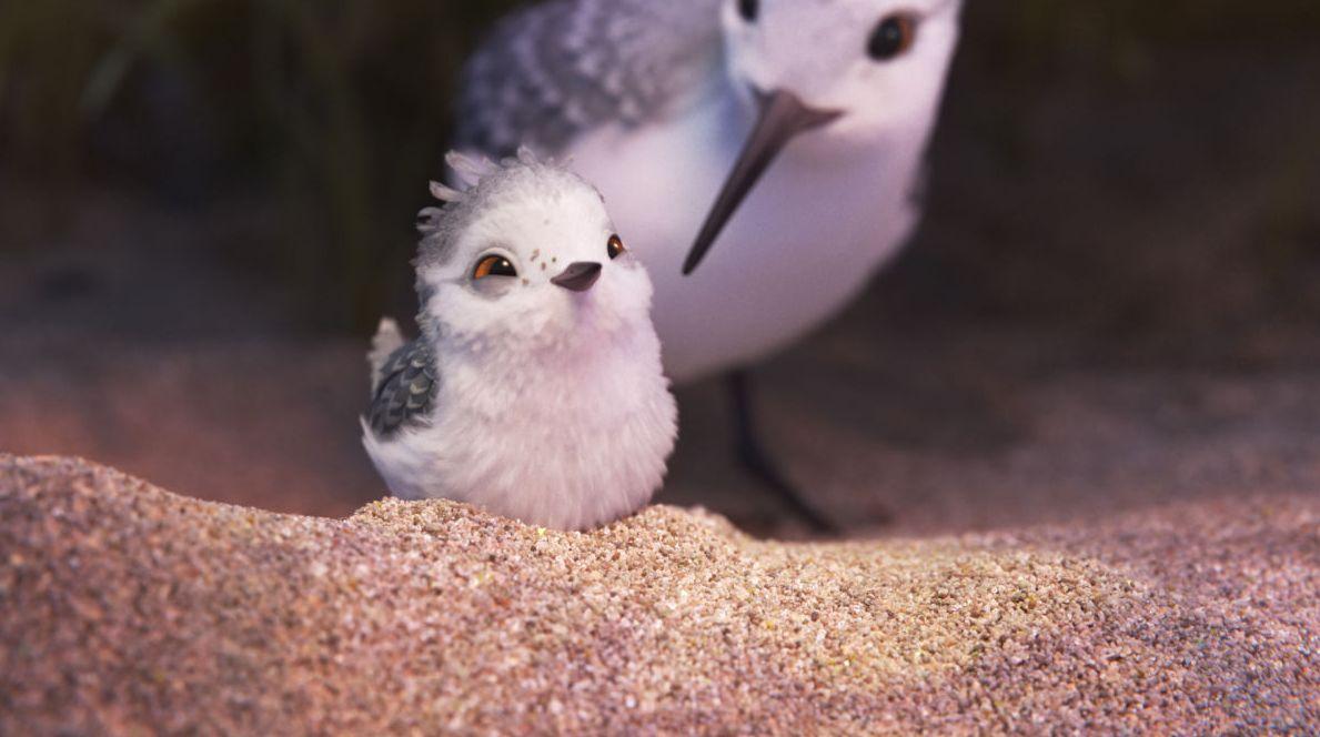More screenshots from Pixar short 'Piper'