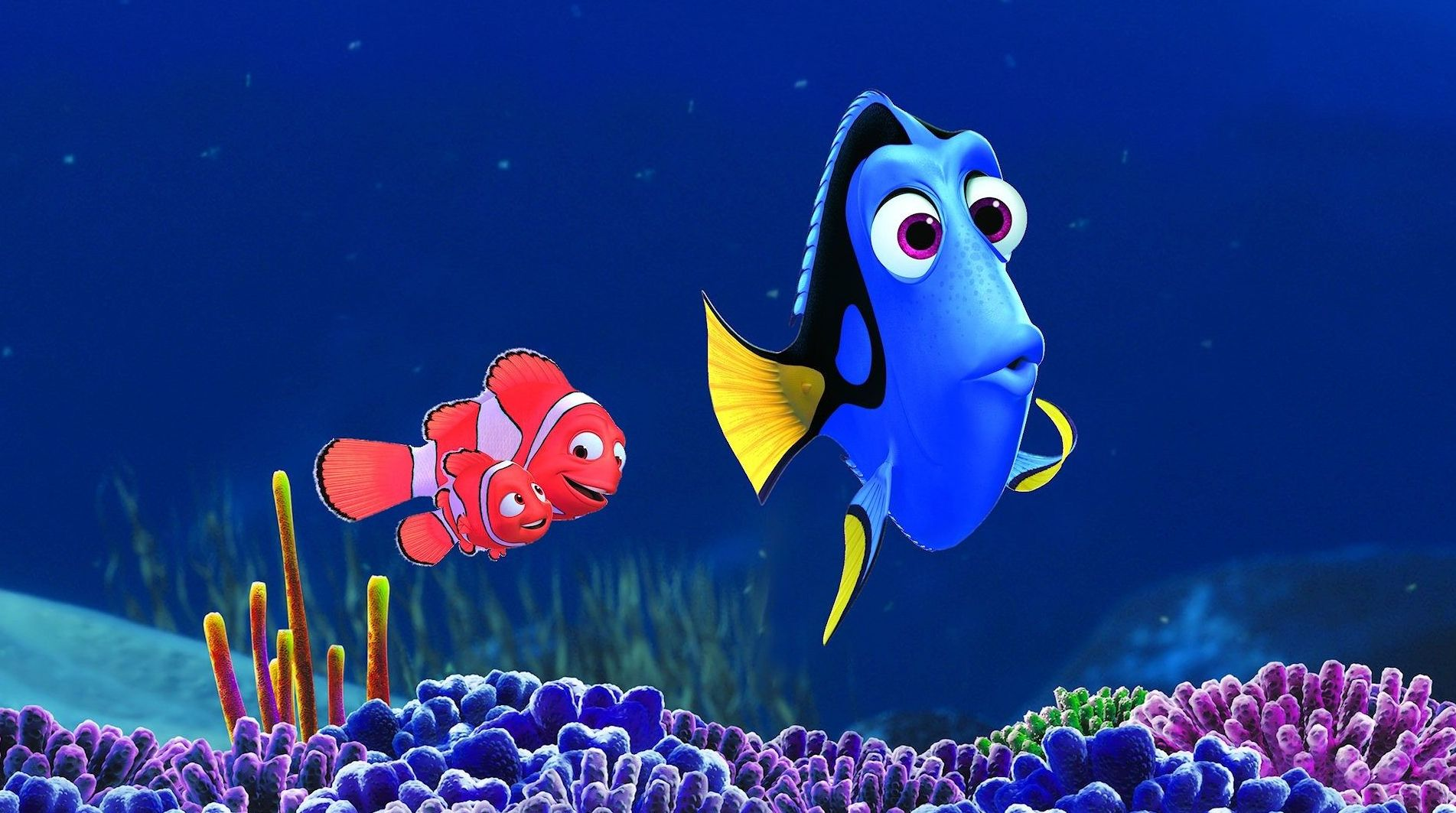 Dory and co.