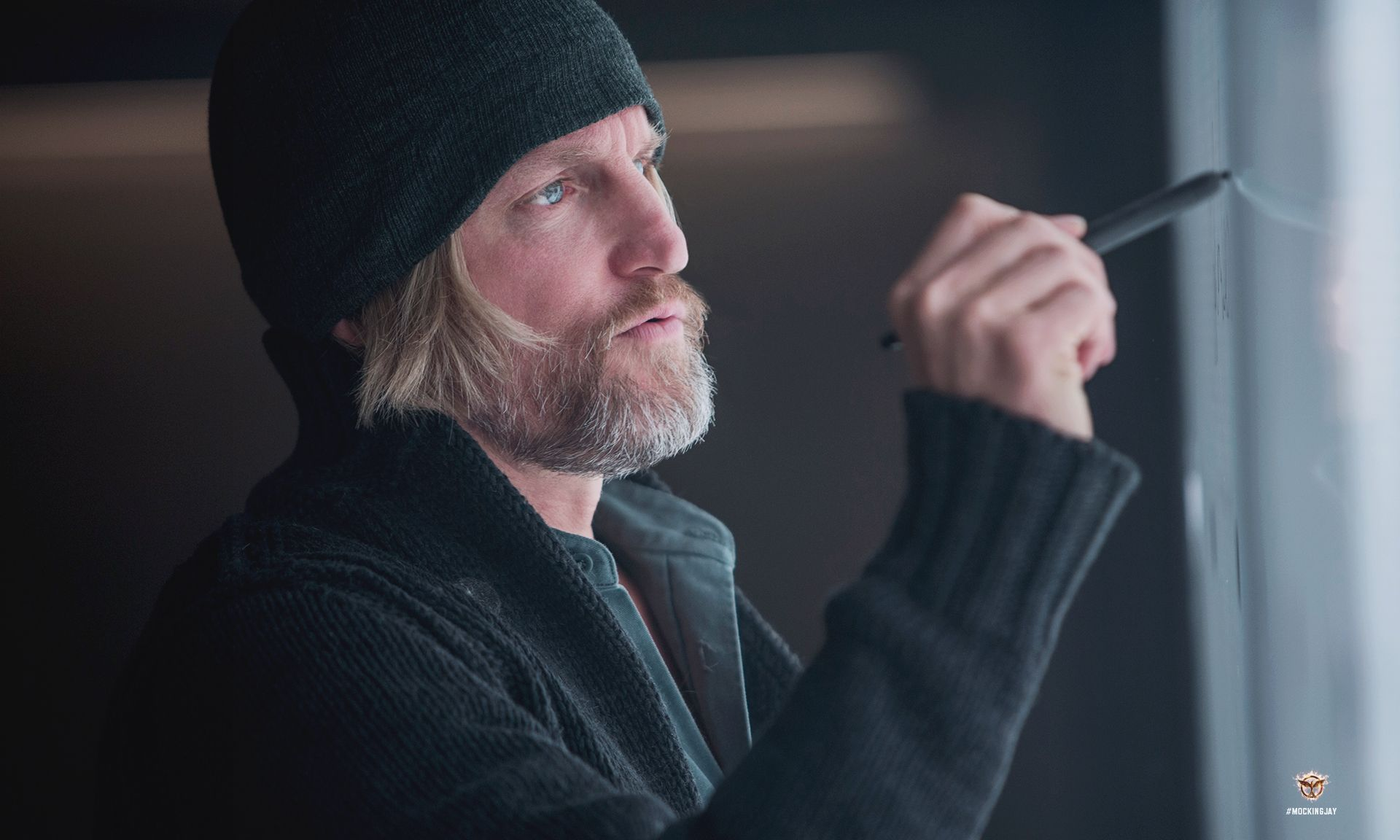 Woody Harrelson as Haymitch