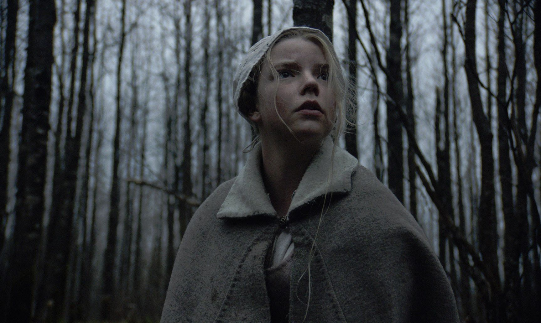 Anya Taylor-Joy, star of 'The Witch'