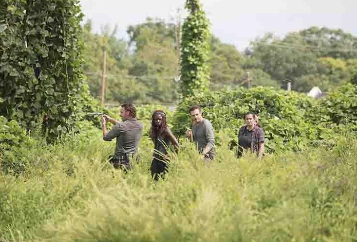 Rick and co. in new image from the season 7B premiere