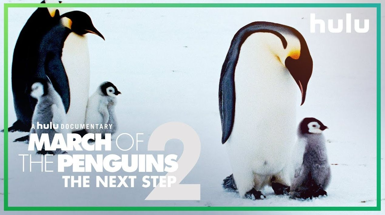 'March of the Penguins 2' debuts March 23rd on Hulu