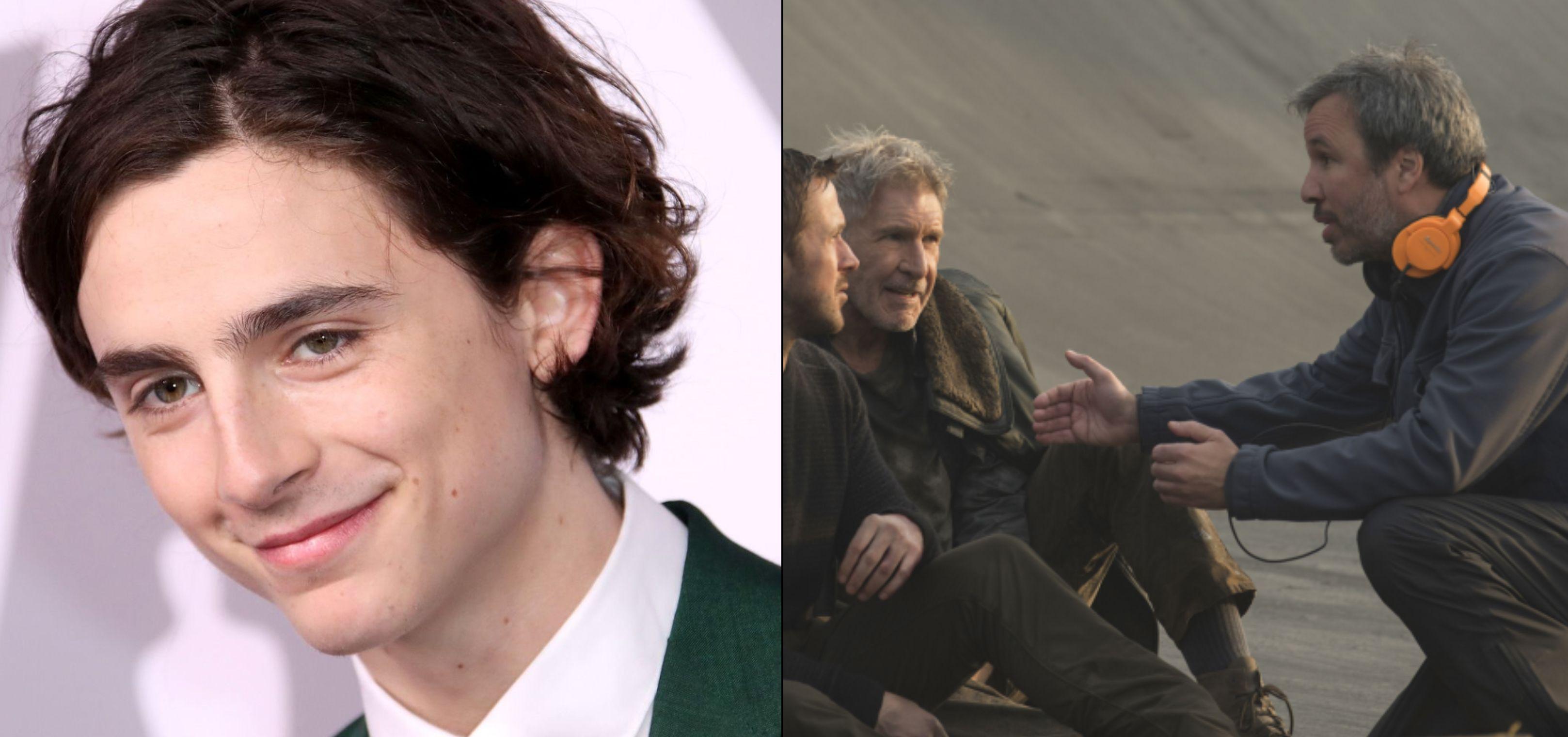 Timothee Chalamet Set To Star In Denis Villeneuve S Dune Cultjer