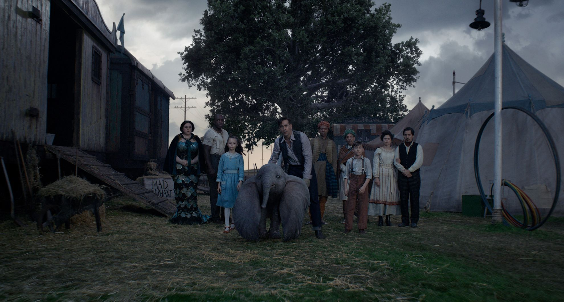 'Dumbo' Walt Disney Studios