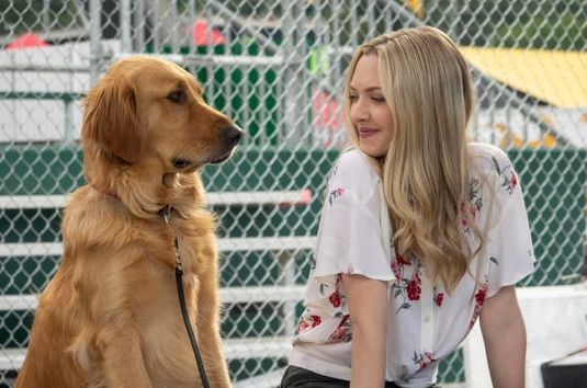 Enzo the Dog & Amanda Seyfried | Cultjer