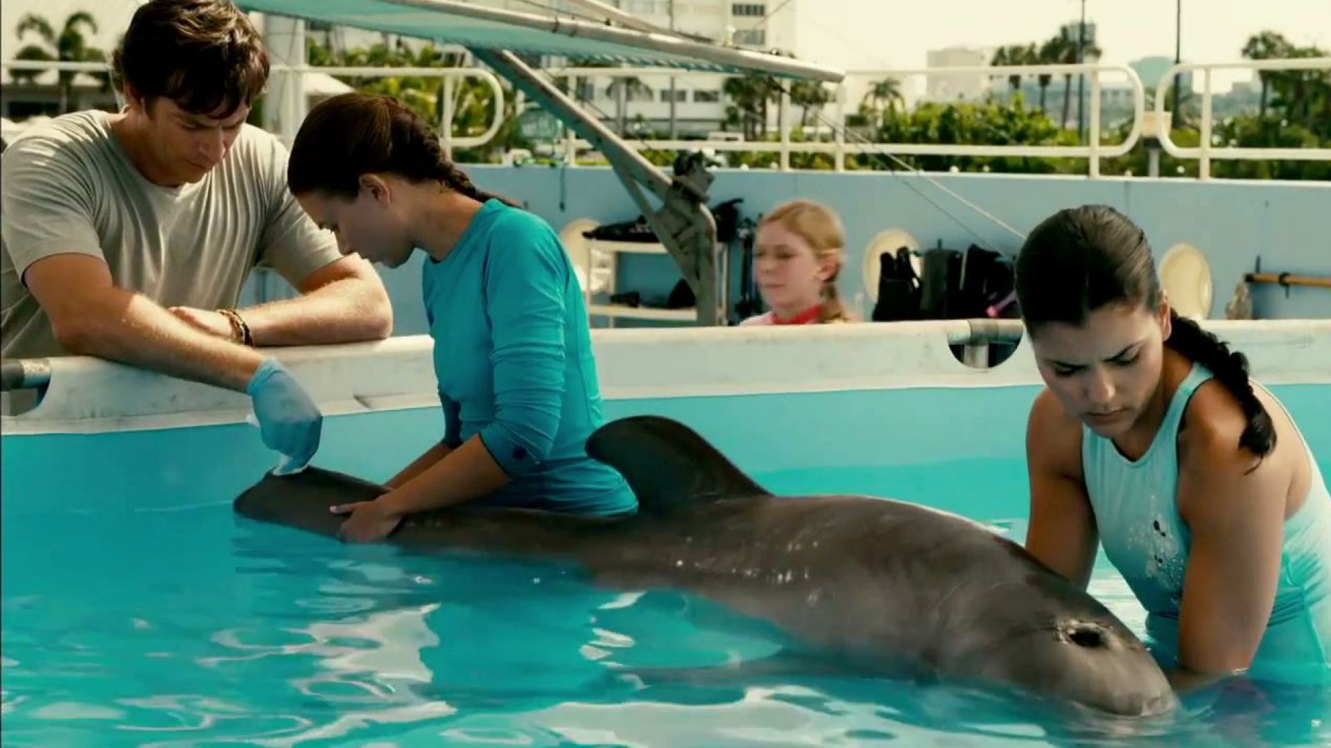 Sawyer is Winter's mom now. Dolphin Tale | Cultjer