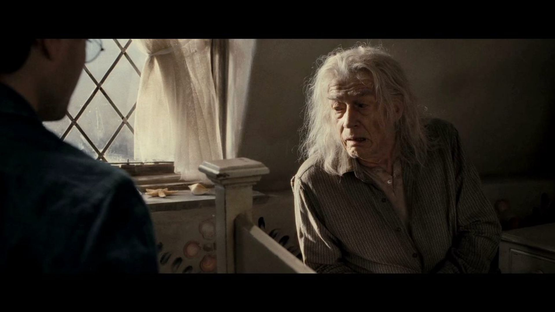 Harry and Mr. Ollivander talk about the Deathly Hallows: the Elder Wand, the Cloak of Invisibility and the Resurrection Stone