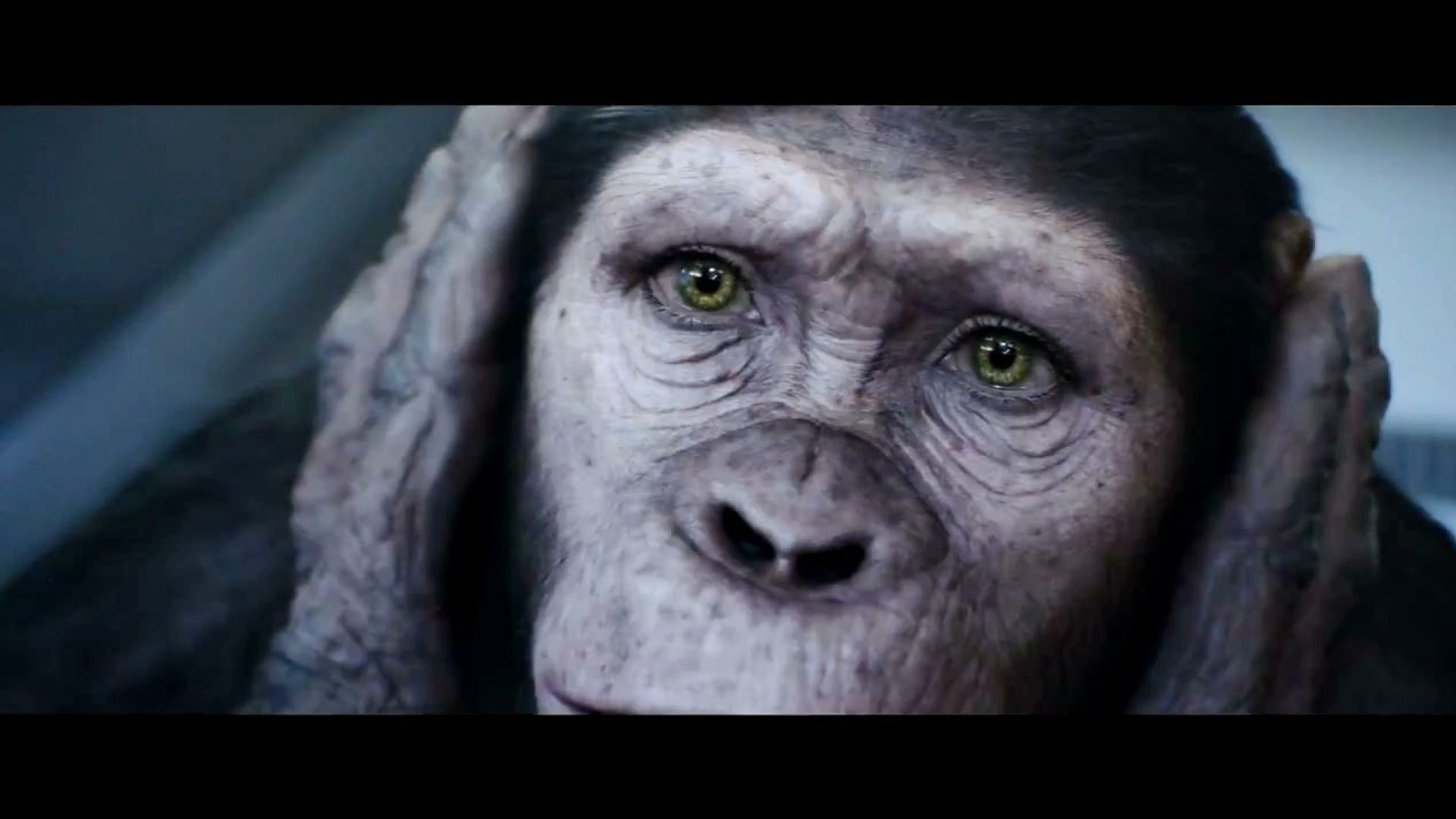 You make history. I make money. Rise of the Planet of the Apes