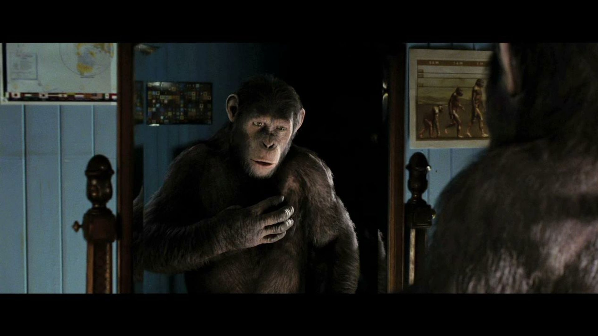 The apes attack, Rise of the Planet of the Apes