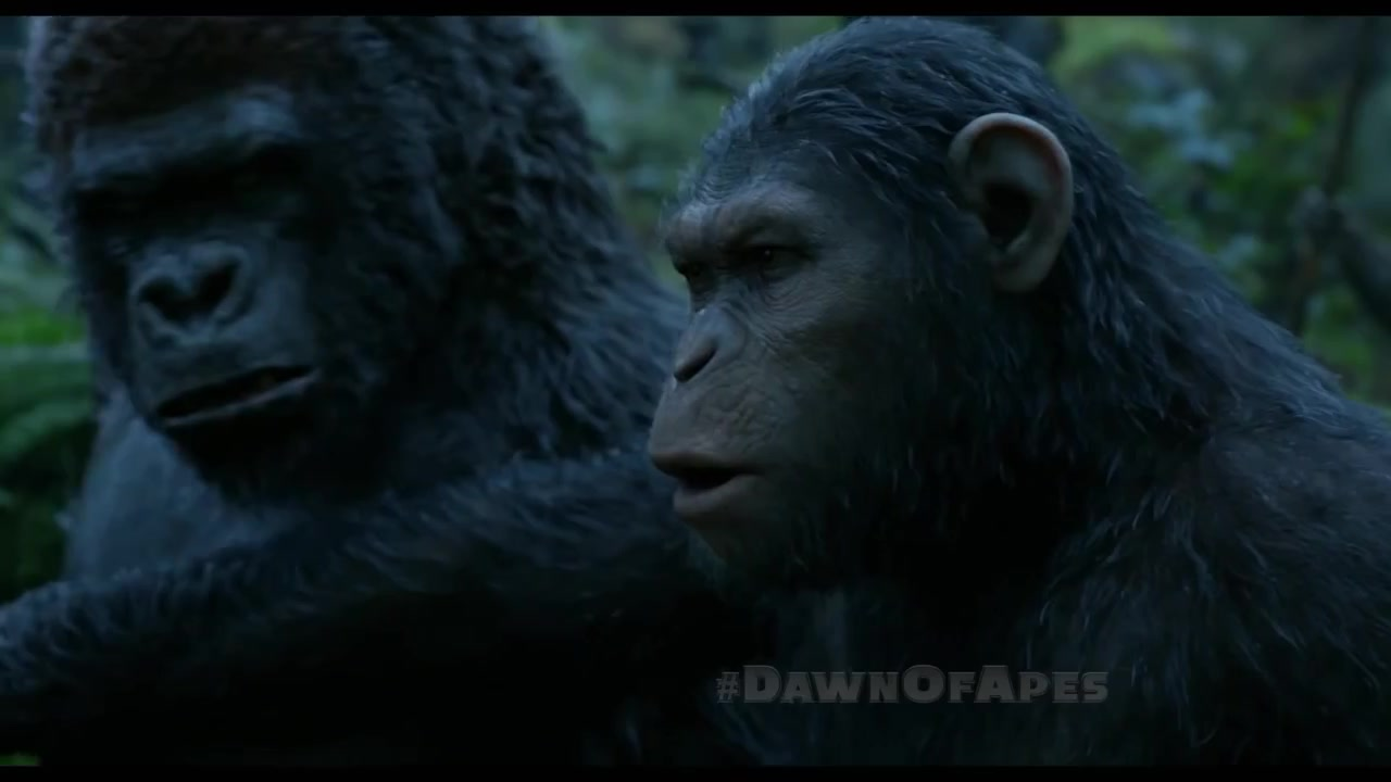 """'Dawn of the Planet of the Apes' TV Spot: """"Prepare"""""""