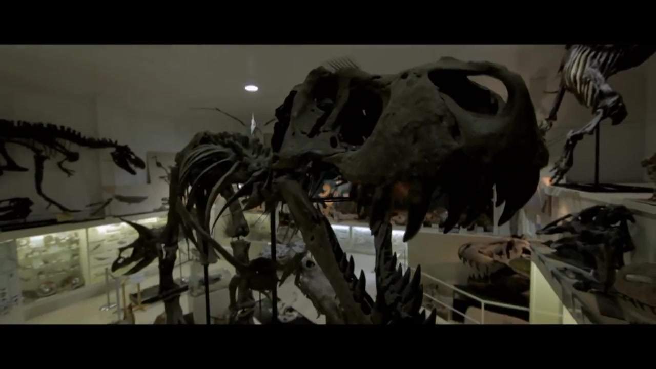 Trailer: Dinosaur 13