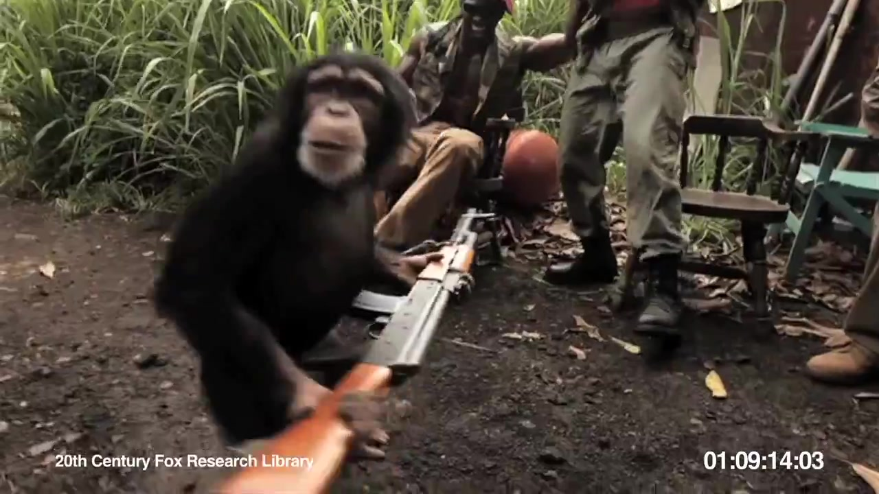 Giving a gun to a monkey