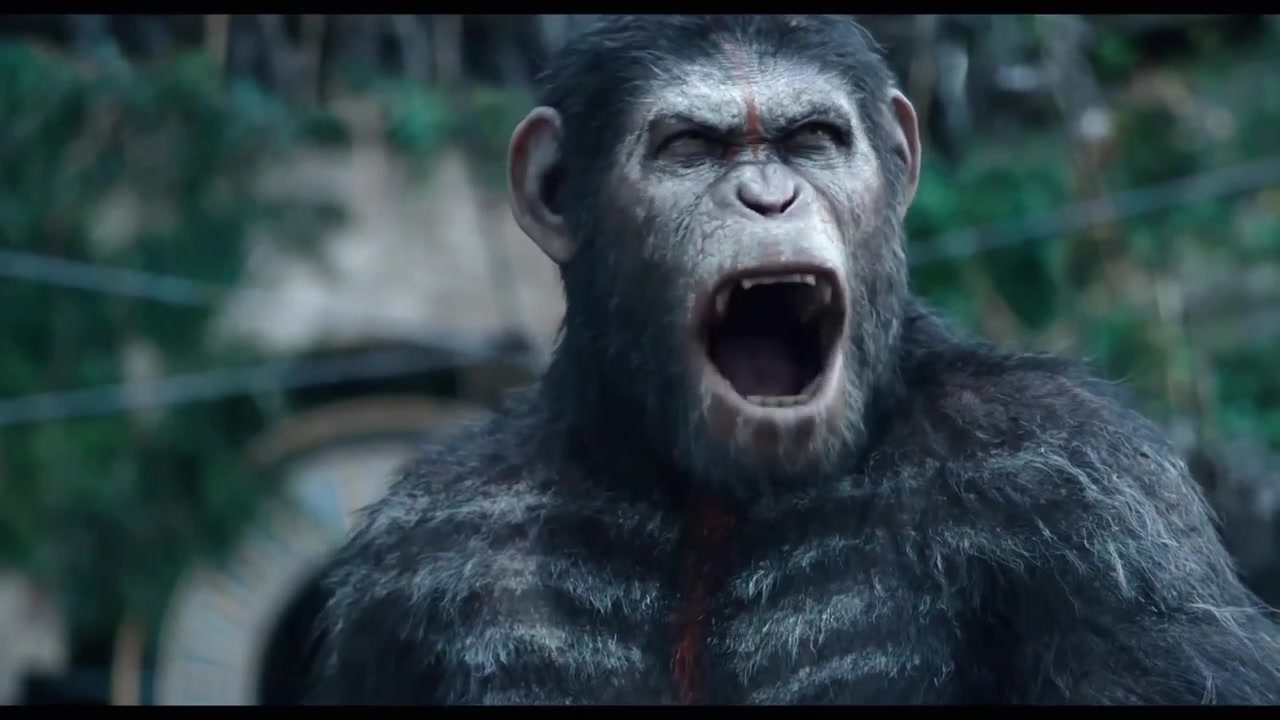 """'Dawn of the Planet of the Apes' Movie Clip: """"Apes Do Not Wa"""