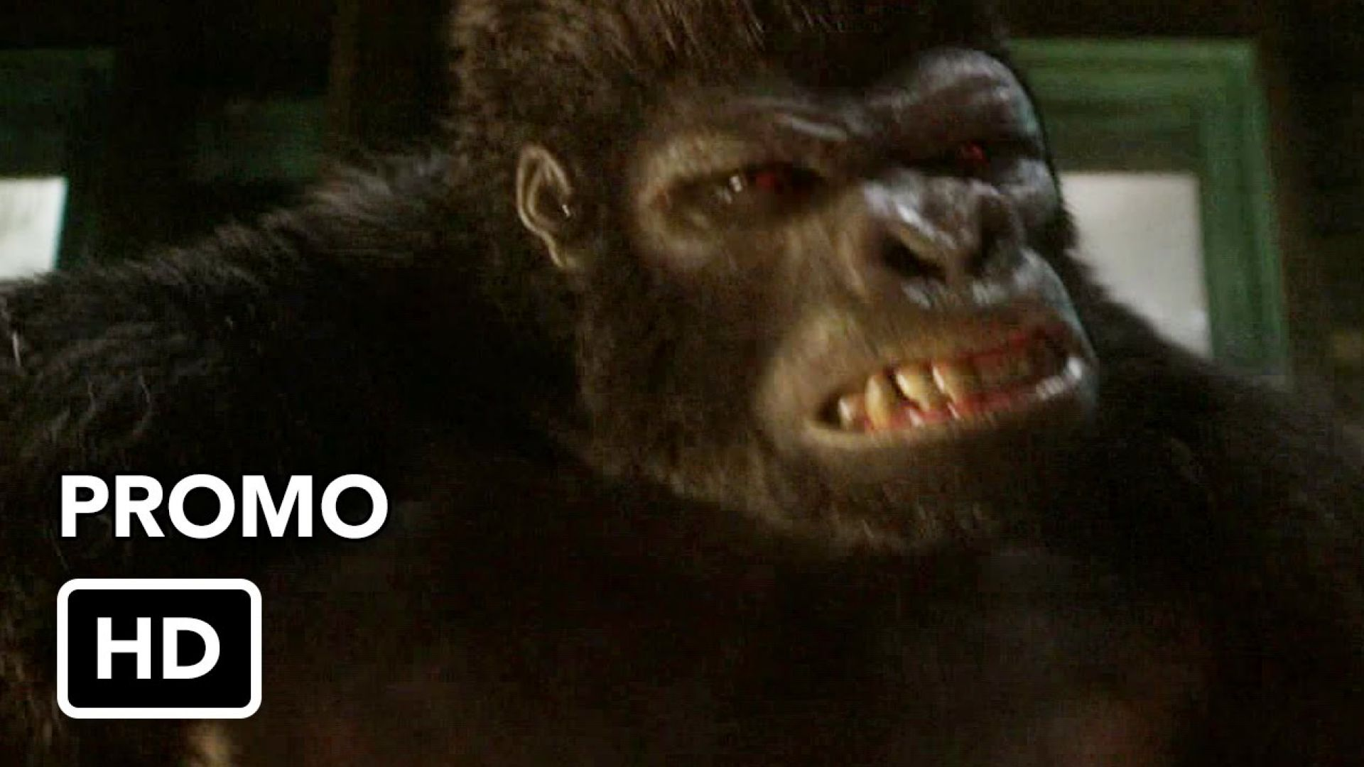"""The Flash 2x07 Promo """"Gorilla Warfare"""""""