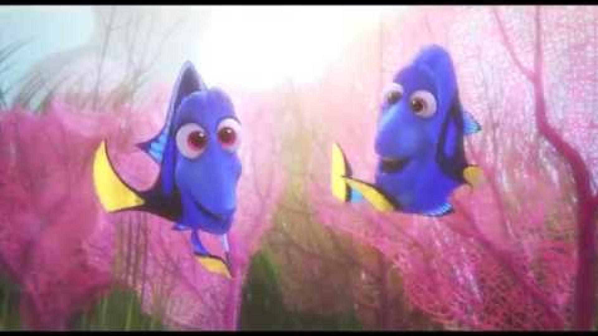 Introducing baby Dory in the adorable new clip for 'Finding